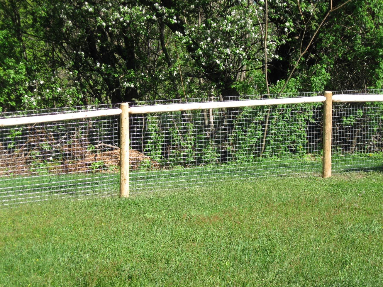 fence design:Single Rail Temporary Fencing For Dogs Designs Fence ...