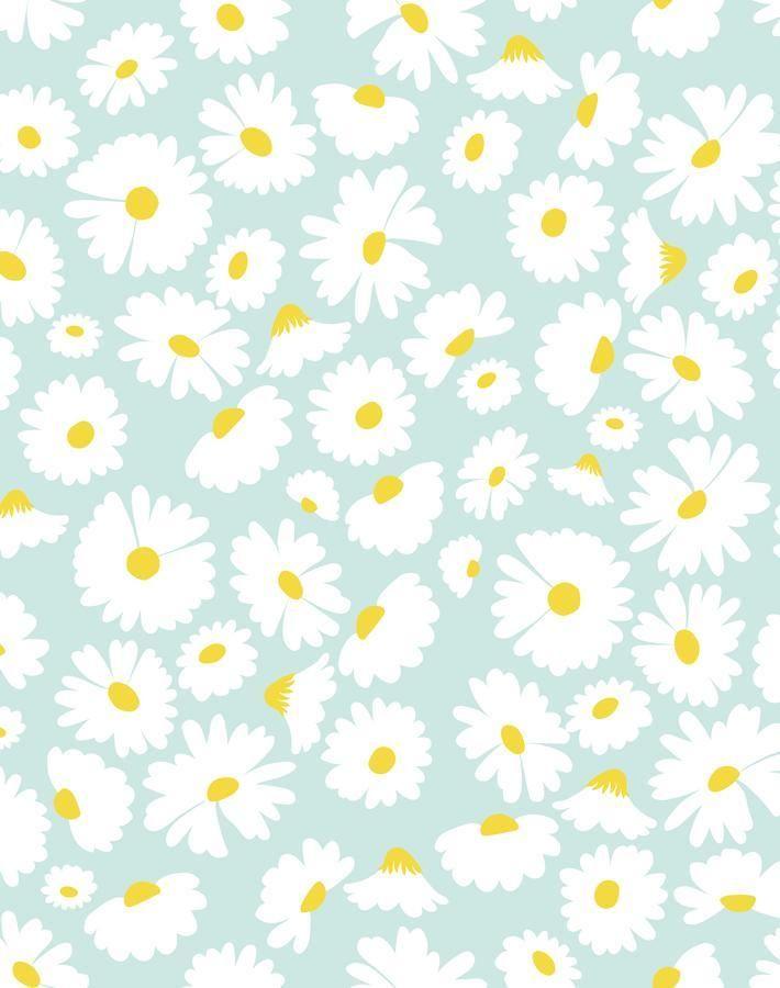 'Pop Daisy' Wallpaper by Wallshoppe - Seafoam - Removable Panel