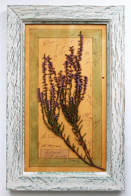 Pressed Flower Art, Drying Herbs, Rustic Wood, Handmade Items, Adhesive