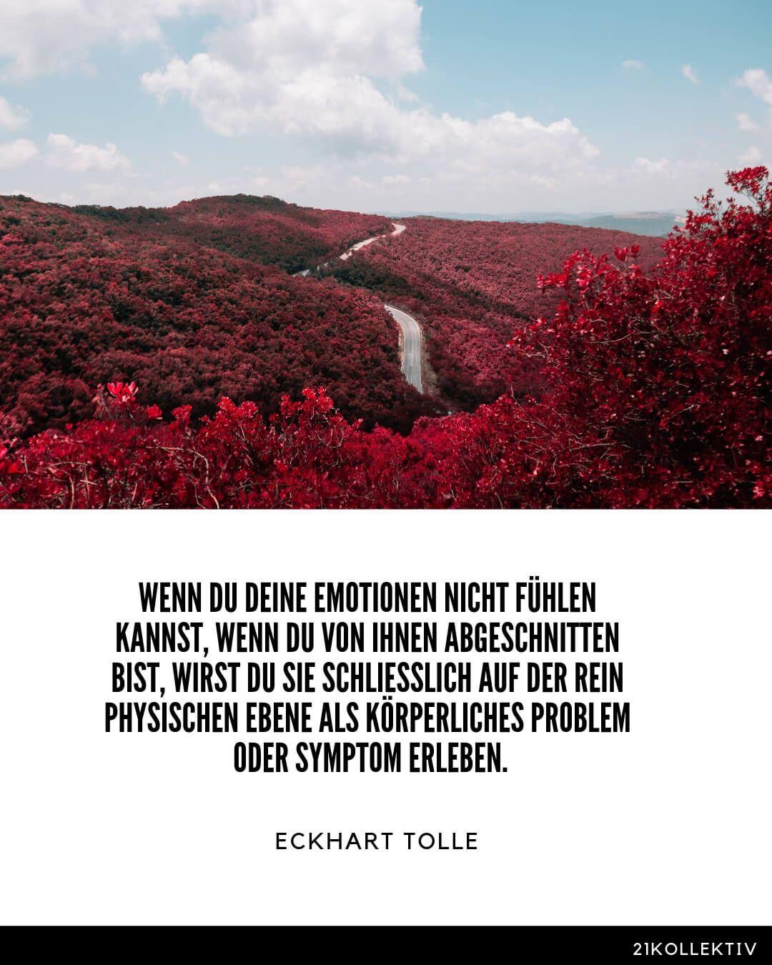 Weisheiten & Zitate von Eckhart Tolle