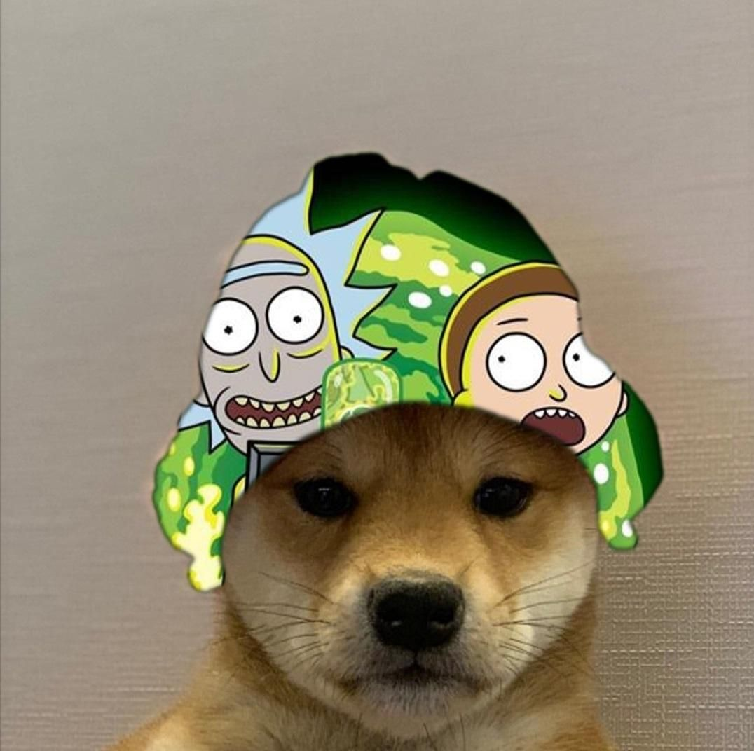 Rick And Morty Dogwifhat Aesthetic Anime Ghost Games Pokemon
