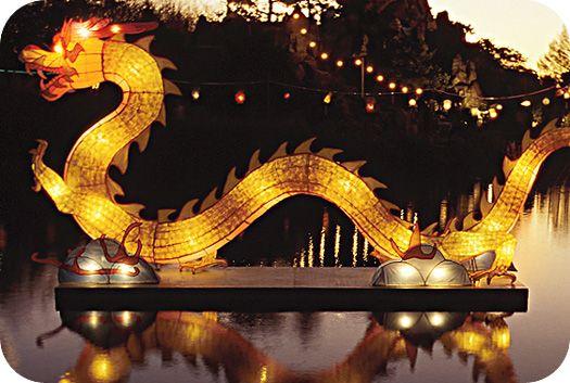 Chinese Dragon Meanings Nu Yeer Pinterest Chinese Dragon