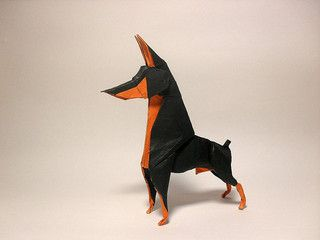 Doberman Pinscher - Alpha | Doberman | Doberman pinscher, Doberman