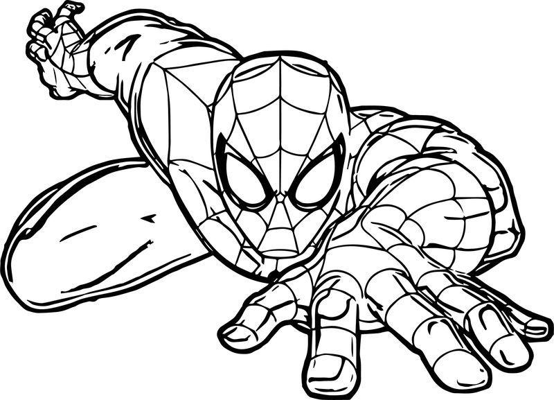 Spiderman Crawl Spider Man Coloring Page Kartun