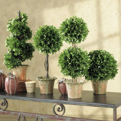 DIY Topiaries! http://diyhomestagingtips.blogspot.com/2010/12/how-to-make-topiary.html