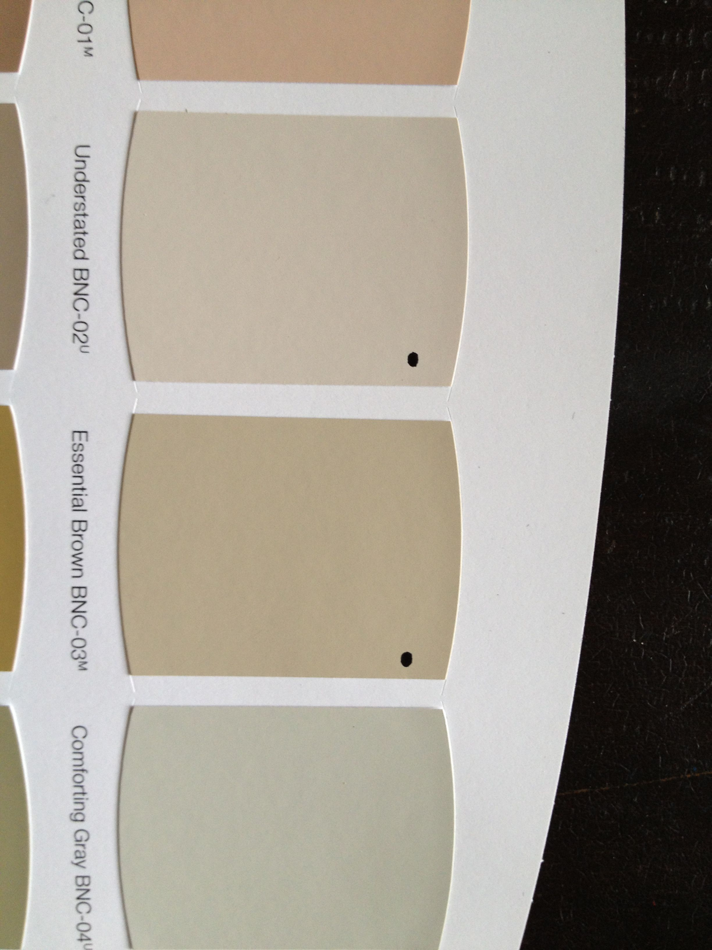 for the interior home depot guy toro is his name on home depot paint sale id=50946