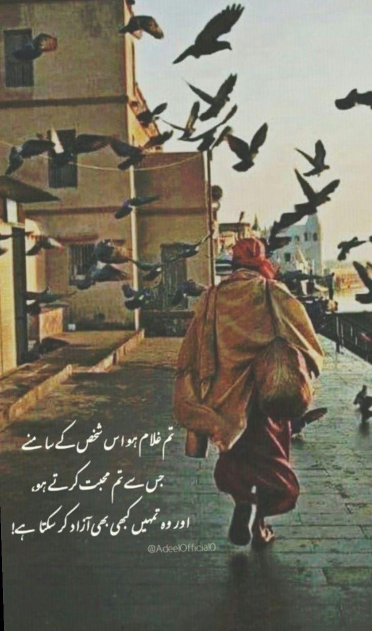 18 Funny Quotes Videos In Urdu Poetry Quotes In Urdu Best Urdu Poetry Images Inspirational Quotes In Urdu