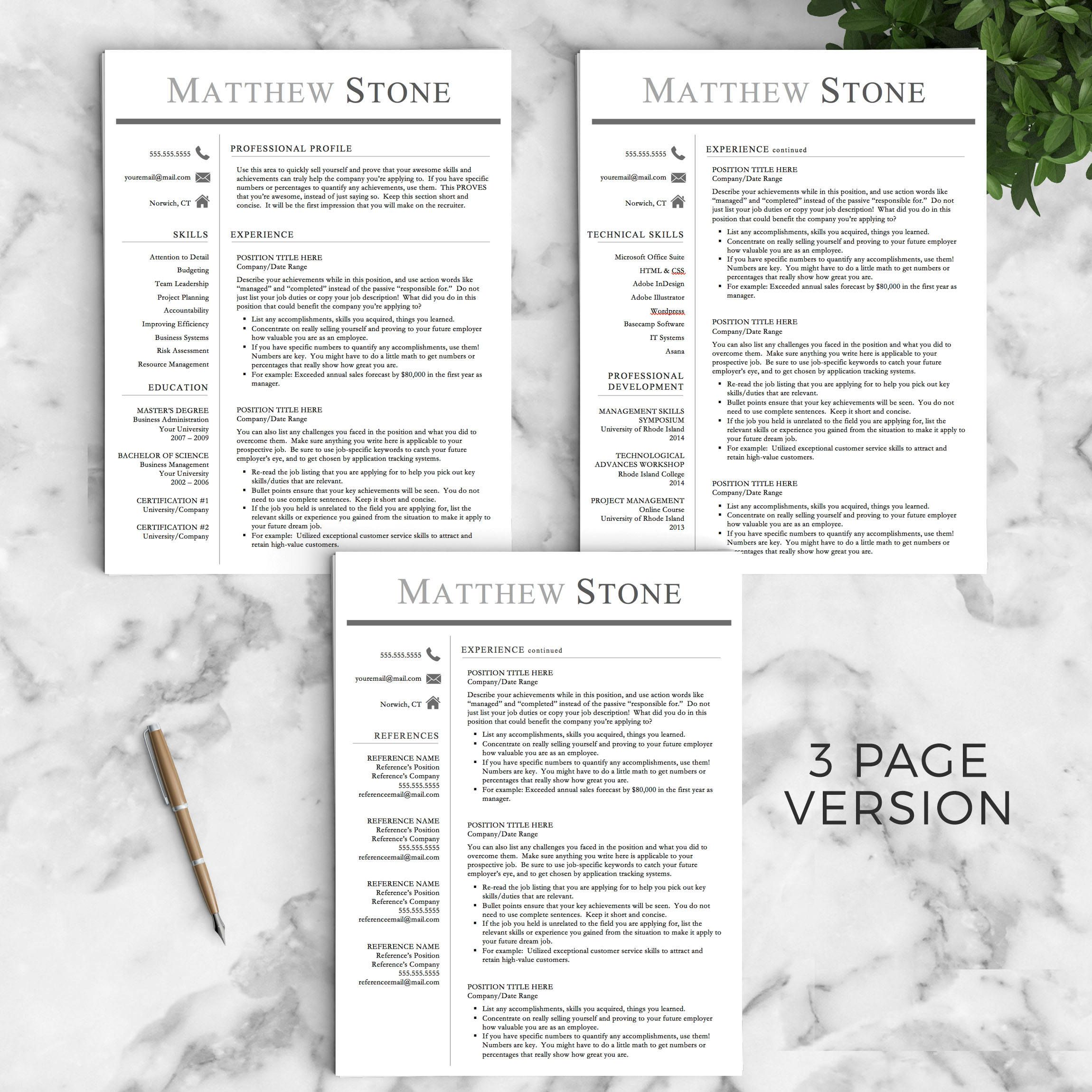 Professional Resume Template For Word  Pages The Stone  Instant