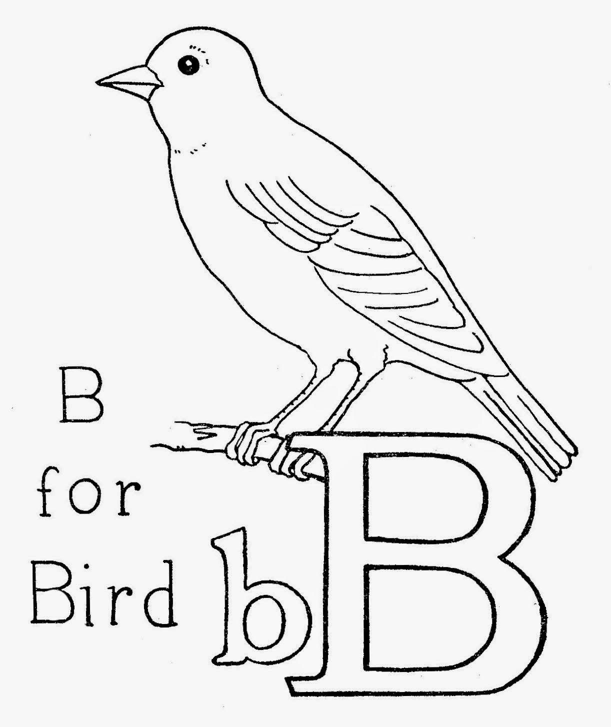 B Is For Bird Eebie Design