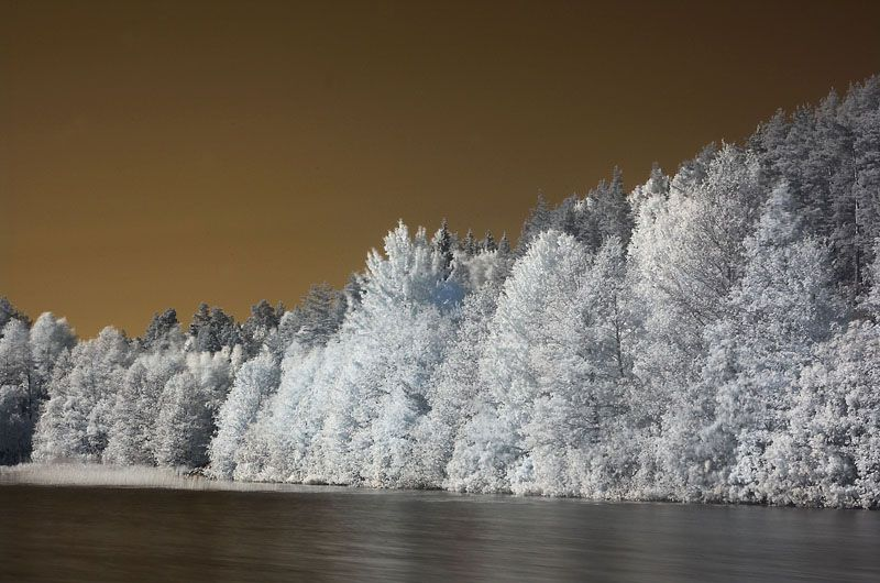 http://photoity.com/20-brilliantly-done-infrared-images/