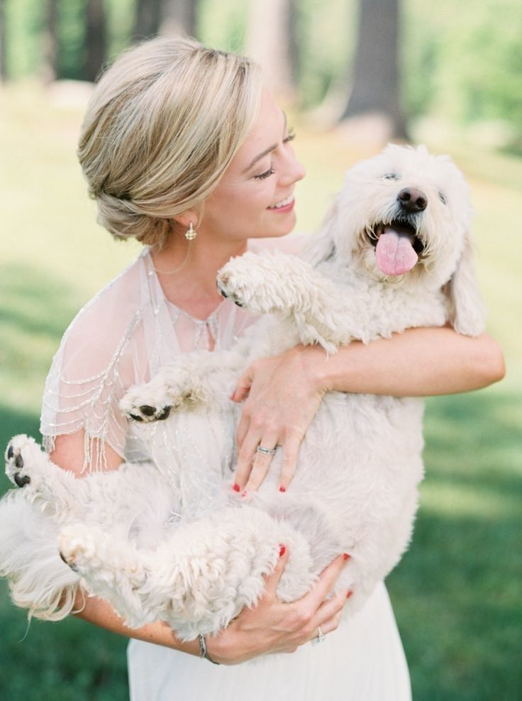 50 Too-Cute Ways to Honor Your Fur Baby in the Wedding Plans