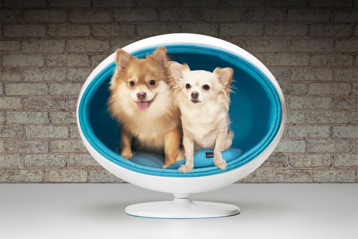 Padpod Modern Pet Bed By Bark Miao With Images Dog Bed Luxury Dog Bed Modern