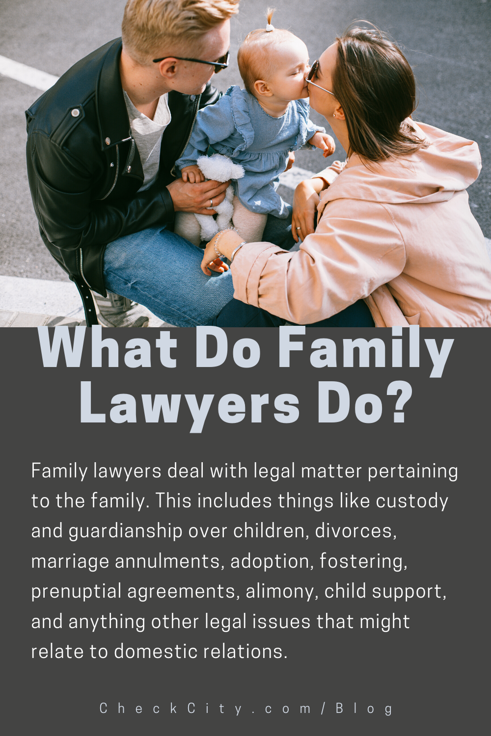 What Do Family Lawyers Do? in 2020 Child support laws