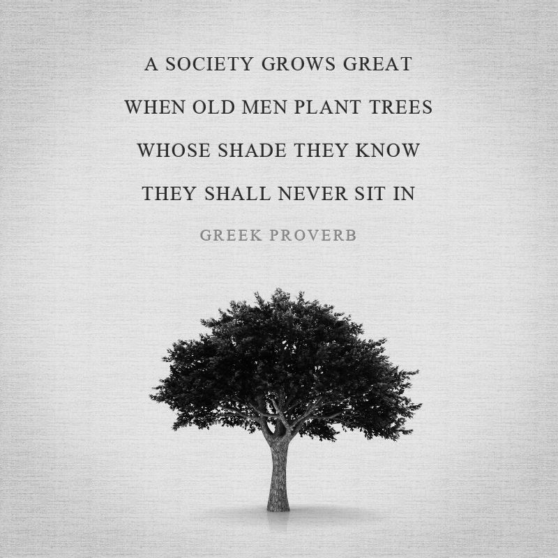 A society grows great when old men plant trees whose shade they ...