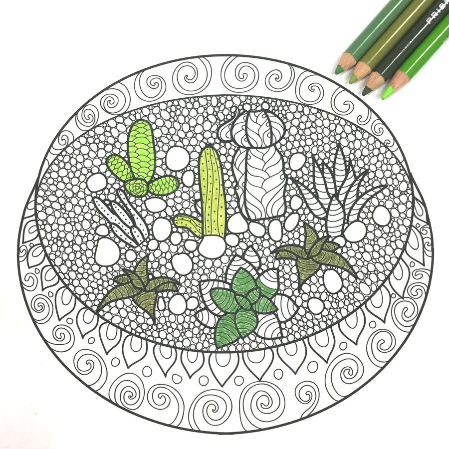 Free Adult Coloring Book Pages with Succulent Terrariums | Malbuch ...