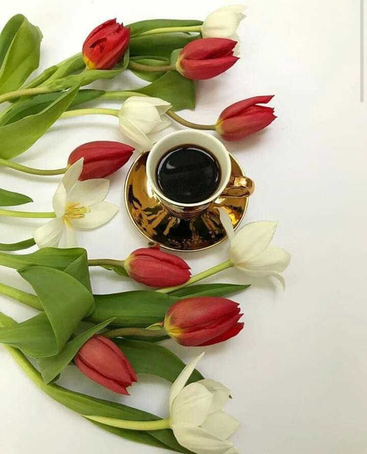после картинки доброе утро с тюльпанами ответ тем