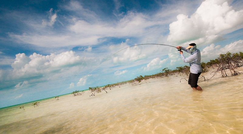Deneki Bone On Fishing Vacation Bahamas Island Bahamas