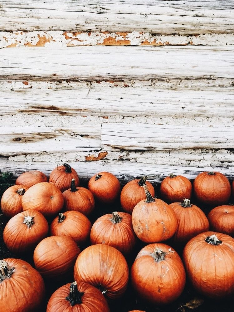 pinterest danyela6 Fall wallpaper, Fall background
