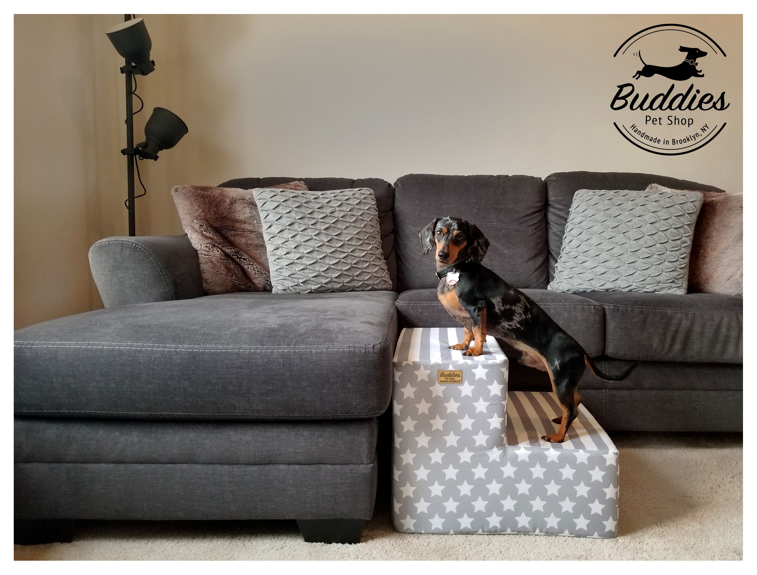 How To Stop Puppy From Jumping On Couch 2021