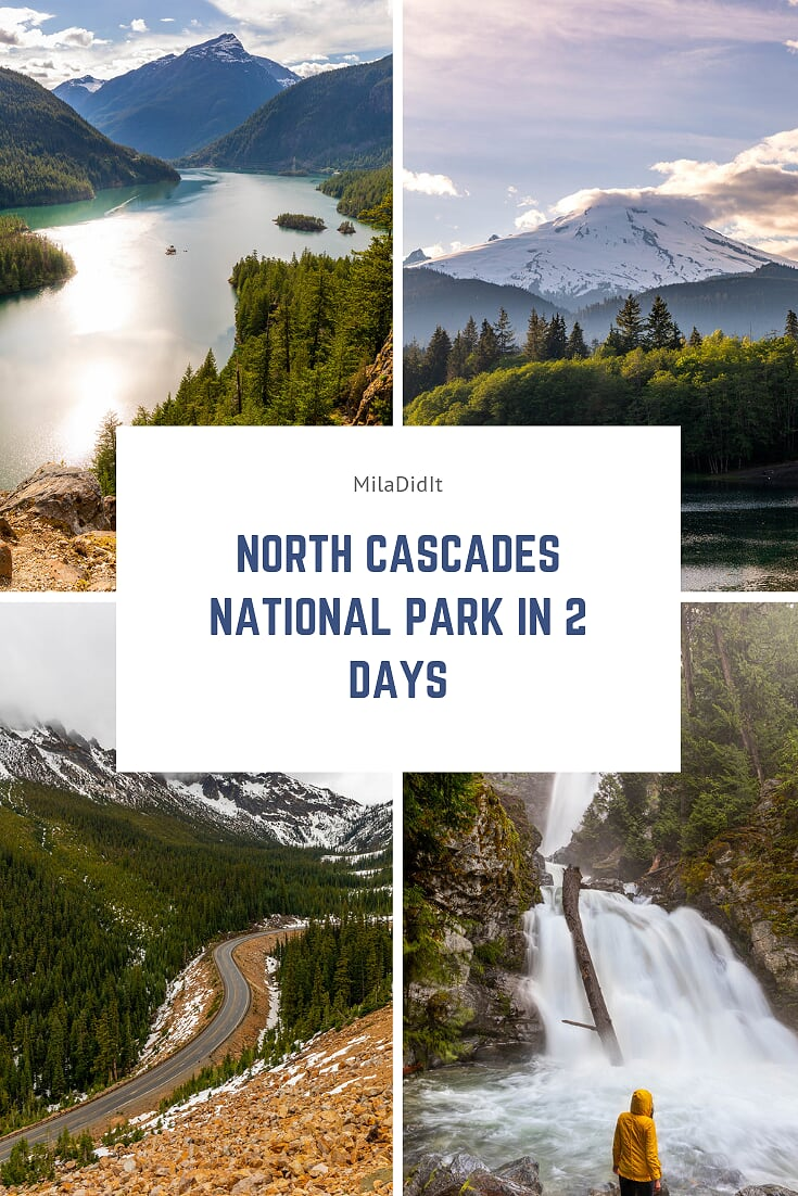 Viewing wildlife #north #cascades #national north cascades national park north