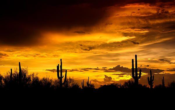 A Southwestern Sunset Landscape Silhouette Arizona Landscape Desert Painting