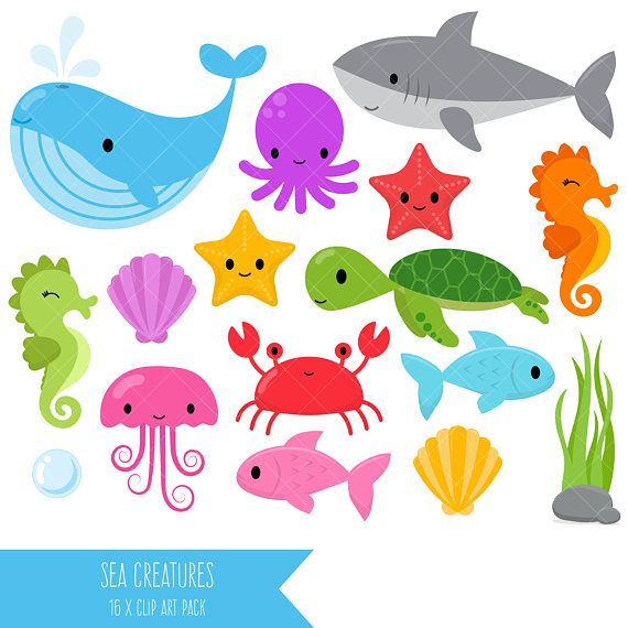 Sea Creatures Clipart Under The Sea Clip Art Whale Shark Etsy Animals Clip Art Sea Animals Ocean Creatures