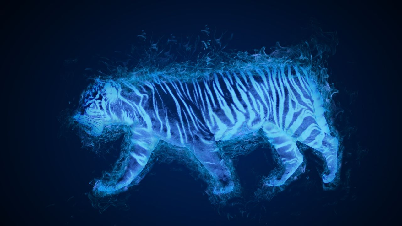 A White Tiger With Blue Flame This Picture Was Made By Adding Flames To The Tiger And Changing The Color Of The Flame To Blue I Blue Flame People Art My