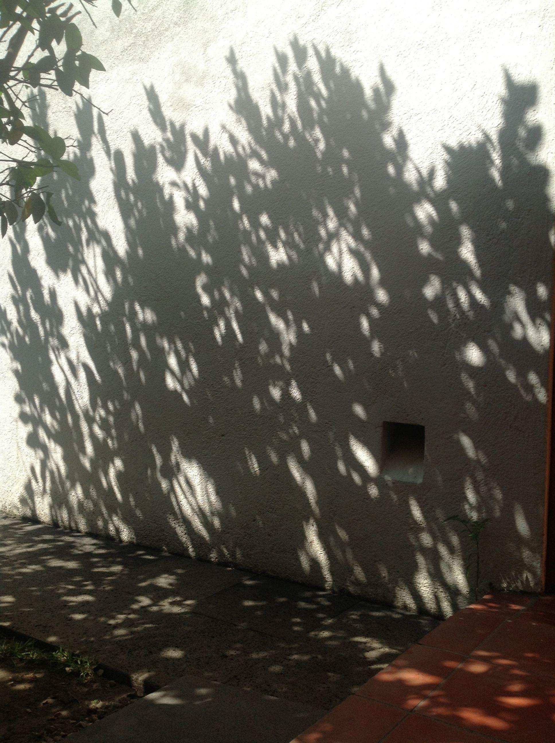 nicho patio sombras