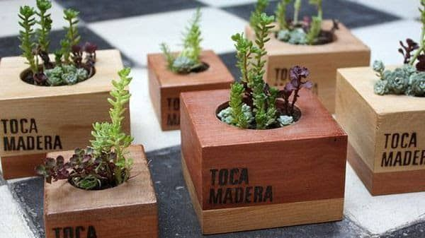 20 Farklı Küçük Ahşap Sukulent Saksı Fikirleri #woodenflowerboxes
