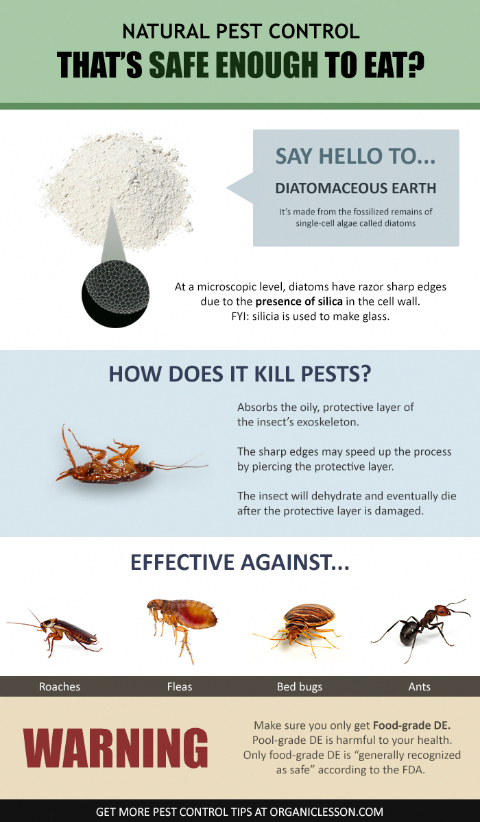 Diatomaceous Earth The 1 Natural Pest Control Solution Learn More About This Organic P Diatomaceous Earth Food Grade Diatomaceous Earth Natural Pest Control