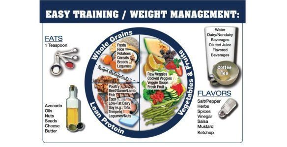 Performance Plate: Day-to-Day Nutrition for Athletes | Rabbit Food Runner #athletenutrition Performance Plate: Day-to-Day Nutrition for Athletes | Rabbit Food Runner #athletenutrition Performance Plate: Day-to-Day Nutrition for Athletes | Rabbit Food Runner #athletenutrition Performance Plate: Day-to-Day Nutrition for Athletes | Rabbit Food Runner #athletenutrition