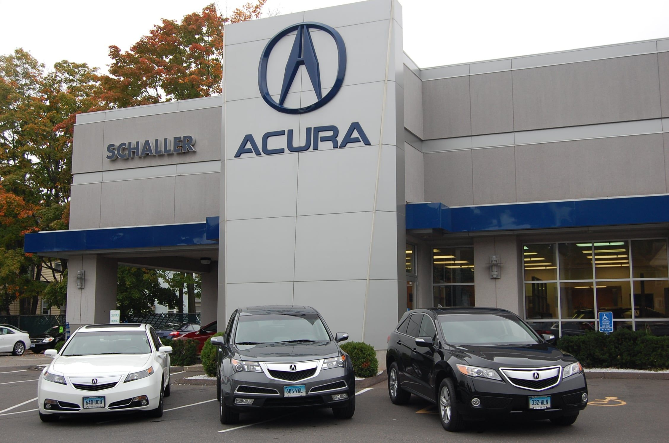 dealers before area embarking you here should beautiful things chicago seven know of dealer acura click