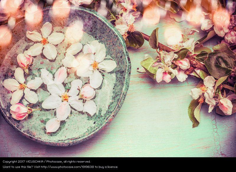 Water Bowl Decoration Wasserschale Mit Frühlingsblüten Fresh Flowers In Water Bowl