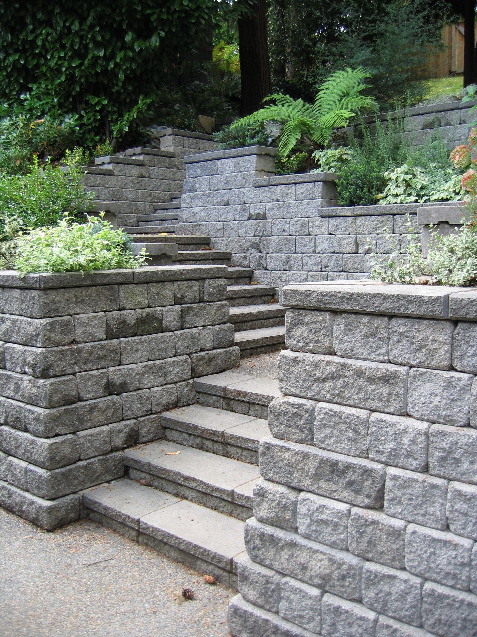 Roman Cypress Projects In 2020 Sloped Backyard Garden