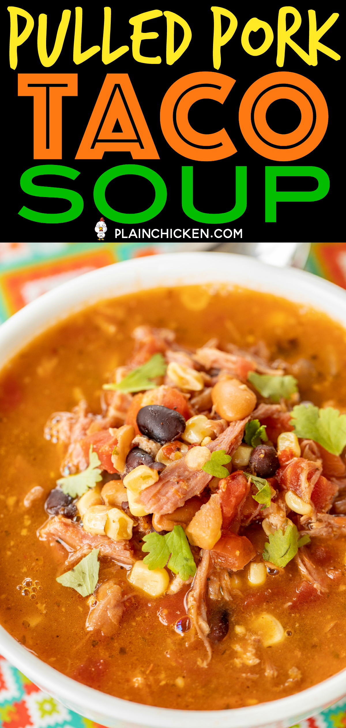 Pulled Pork Taco Soup - Plain Chicken