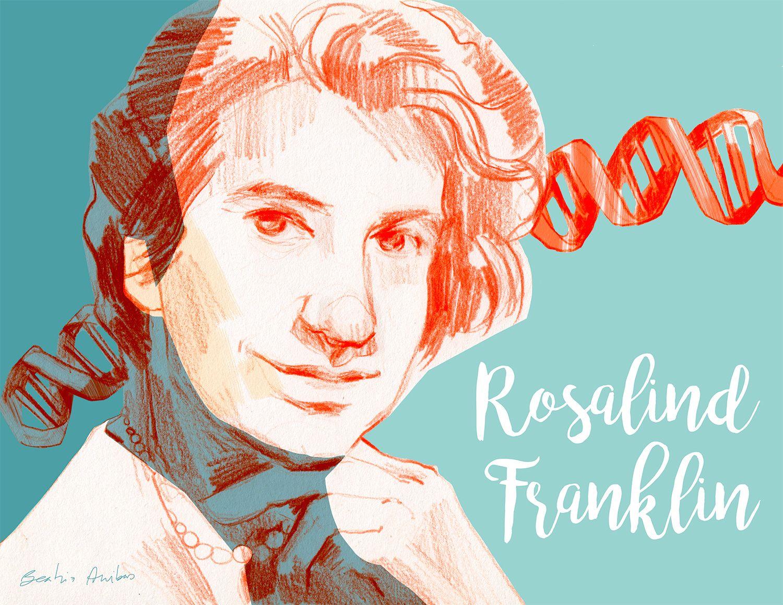Rosalind Elsie Franklin 1920 1958 Fue Una Química Y