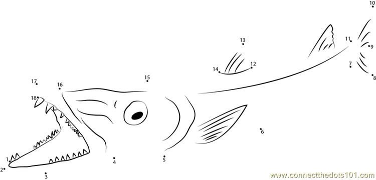 Barracuda Open Mouth Connect Dots Download Picture Dot To