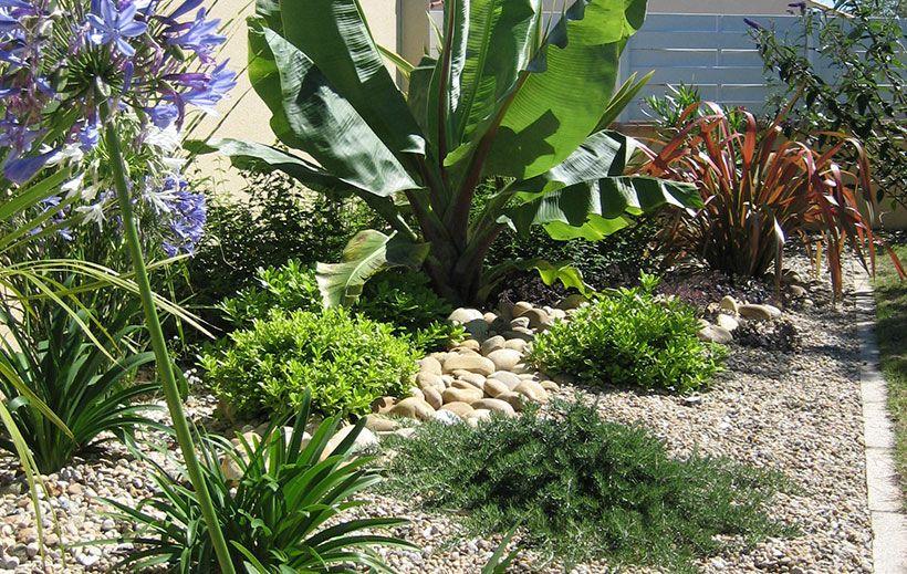 Pepiniere Talmont Saint Hilaire Creation Jardin Paysagiste Jardins