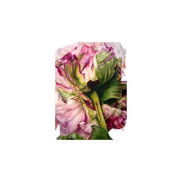Pink peonies ❤ liked on Polyvore featuring home, home decor, pink home accessories and pink home decor