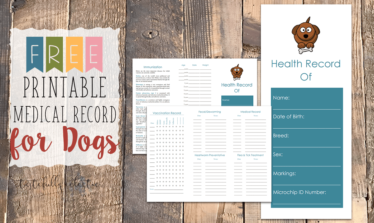 Pin On Printable Medical Records For Dogs