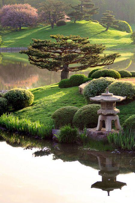 Jardines japoneses en el jardin botánico de Chicago Diseño