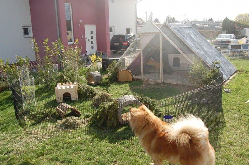 Pyramidengehege Bauanleitung Kaninchengehege Gehege Kaninchen