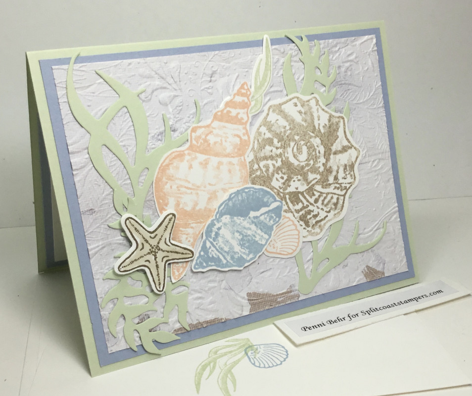 SC832 Seaside Shells by razldazl - Cards and Paper