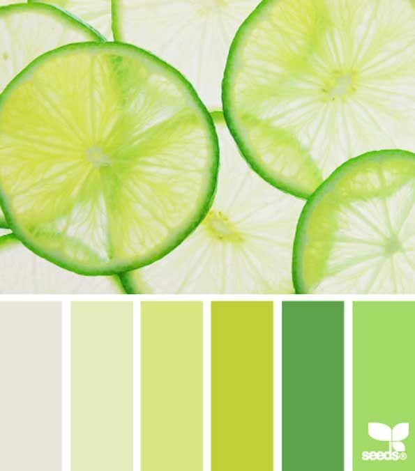Yellow Green Citrus Color Combination