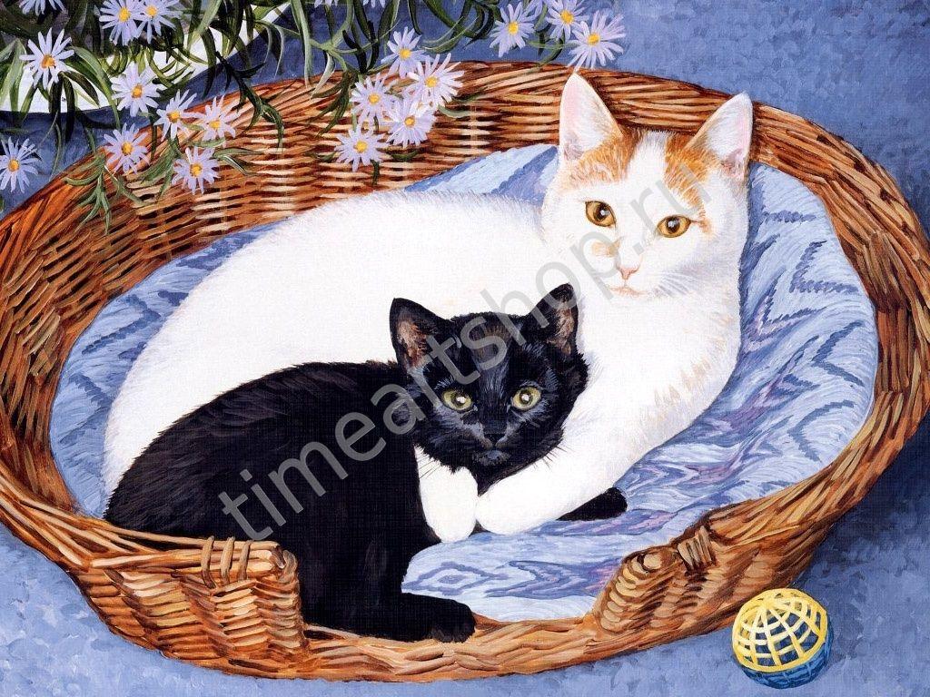 Беленькая кошечка и чёрный котёнок, картины раскраски по ...