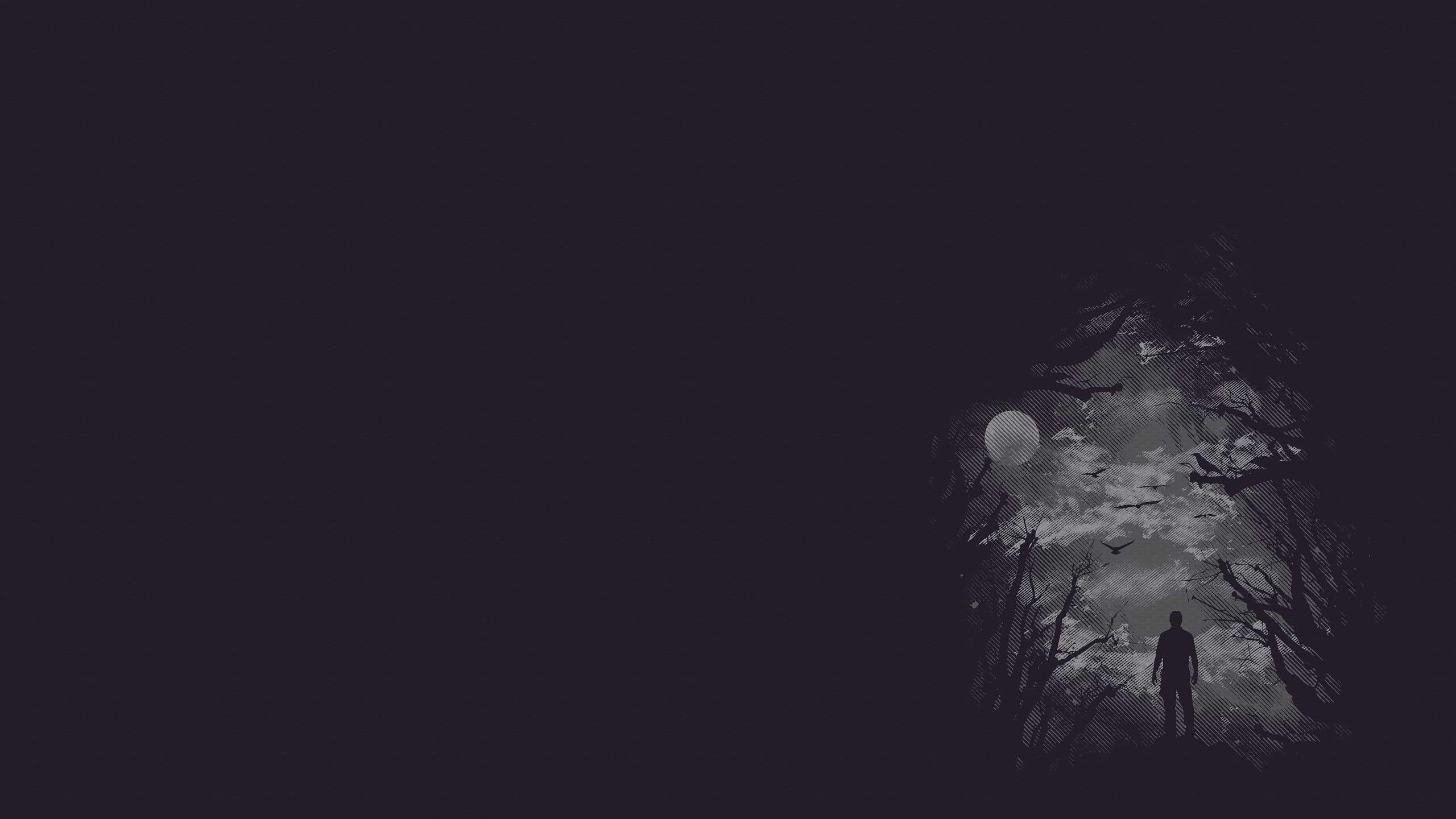 Silhouette Of Man Illustration Night Moon Dark Minimalism Digital Art 2k Wallpaper Hdwallp Minimalist Desktop Wallpaper Background Pictures Hd Wallpaper Dark minimalist wallpaper hd