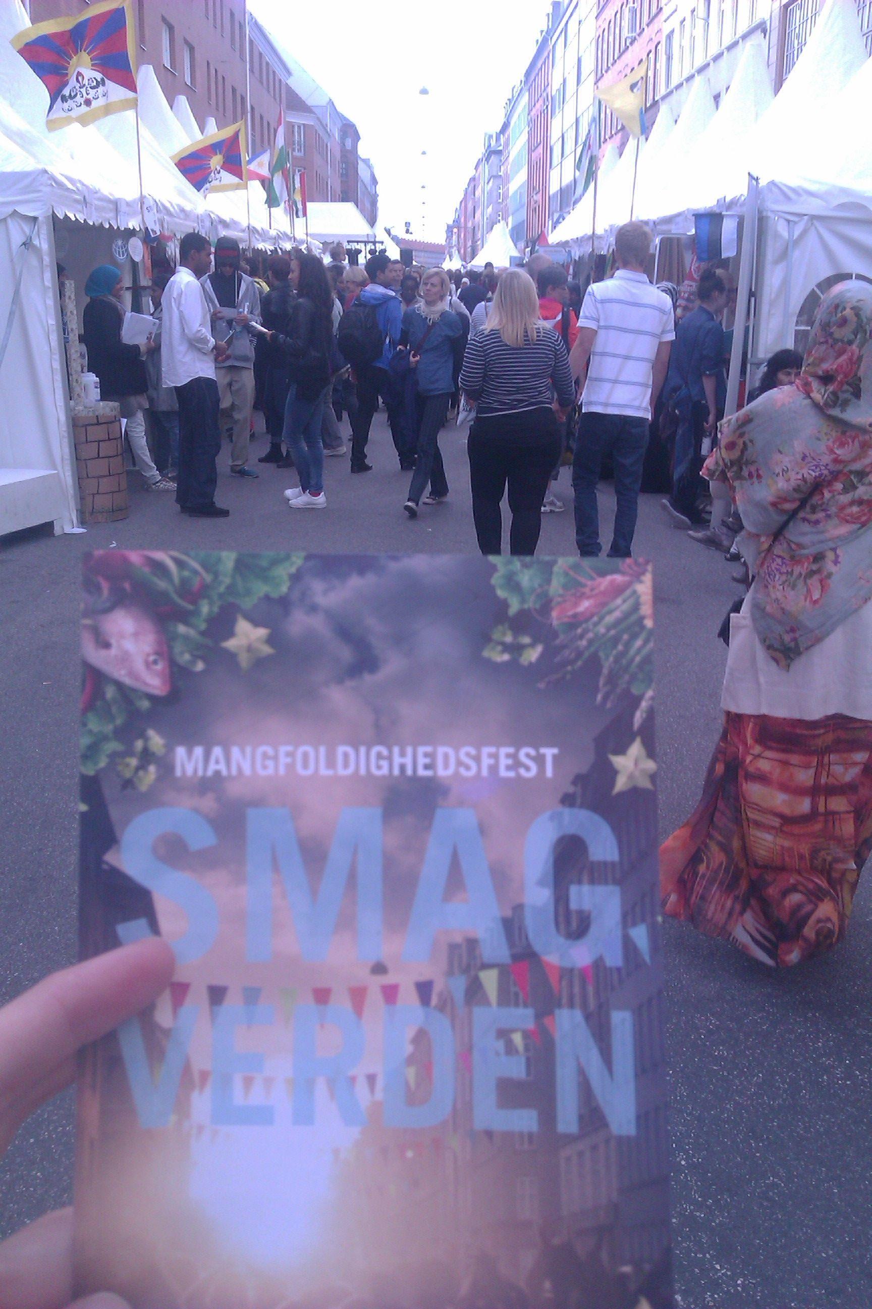 Gadefestivallen Smag Verden. Oplev Danmarks bedste verdensmusik, gourmet gadekøkken til studenterbudget, skæve gadeevents og et hav af foreninger og boder. Afholdes hvert år i august.