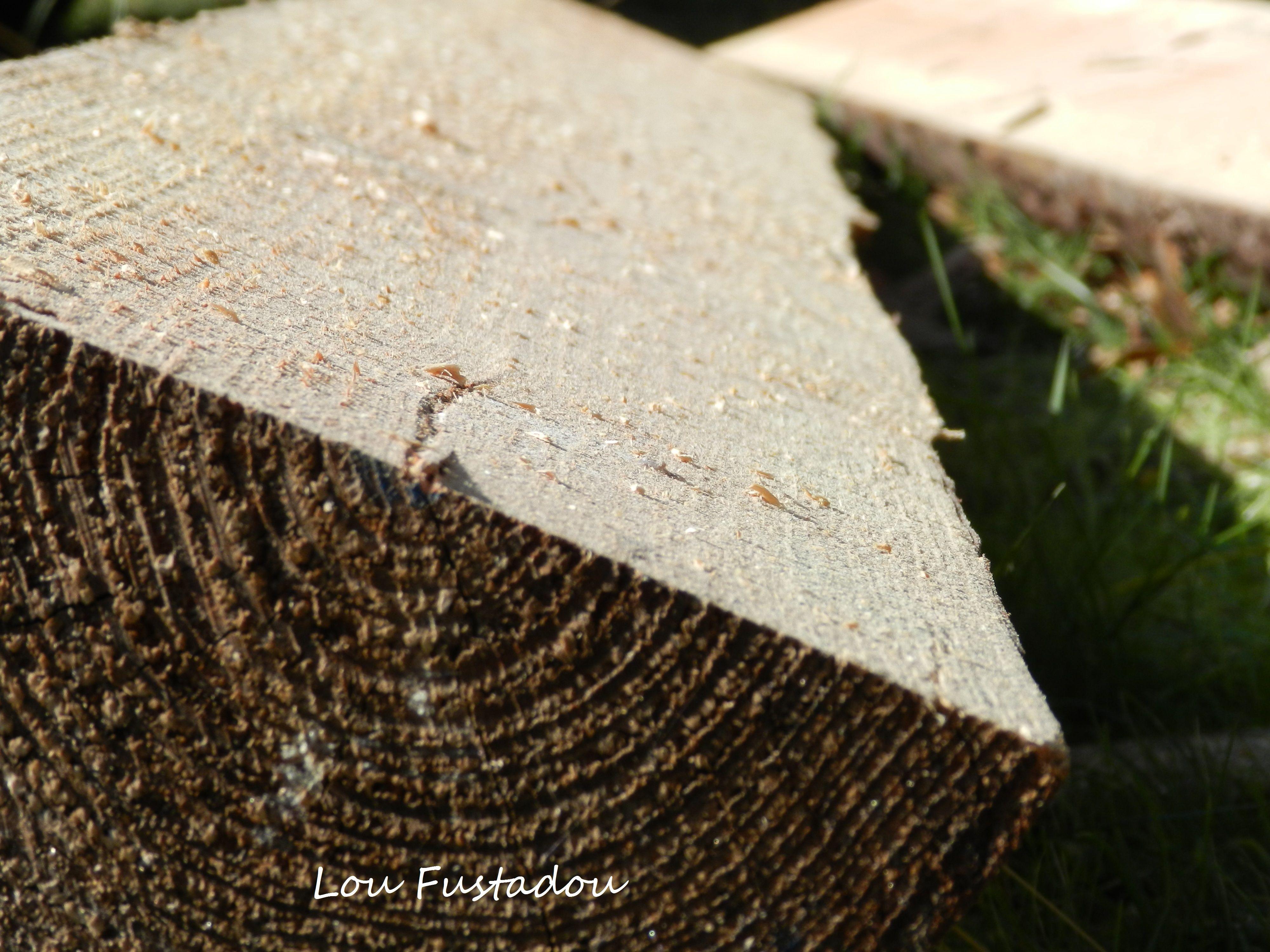 Plateau de douglas - Table en bois | Mobilier de jardin en rondins ...