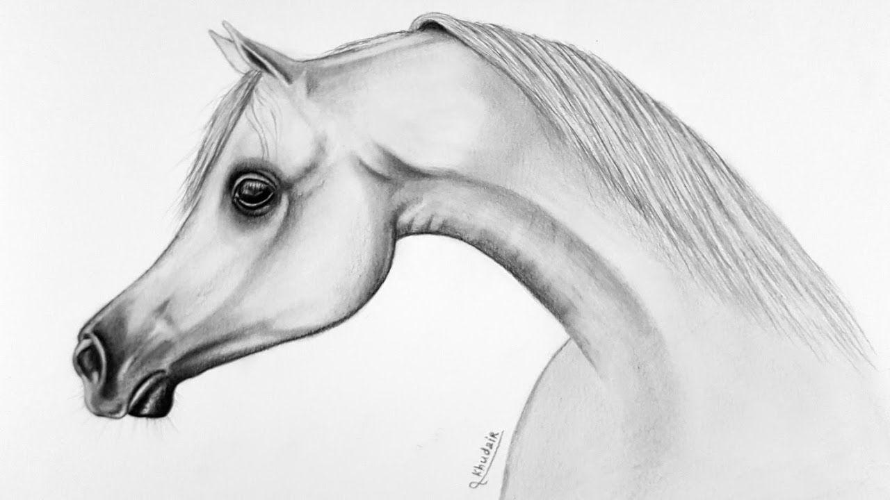 تعلم رسم الحصان بالقلم الرصاص Drawing A Horse Pencil Holzkunst Pferd Holzpferd