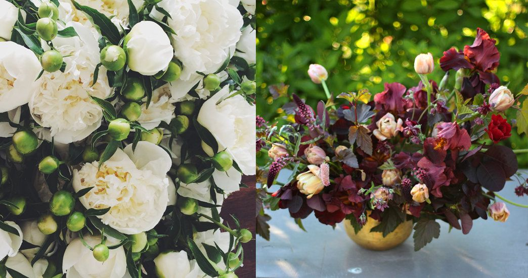 Notes from the Field: Early Summer with Love 'n Fresh Flowers
